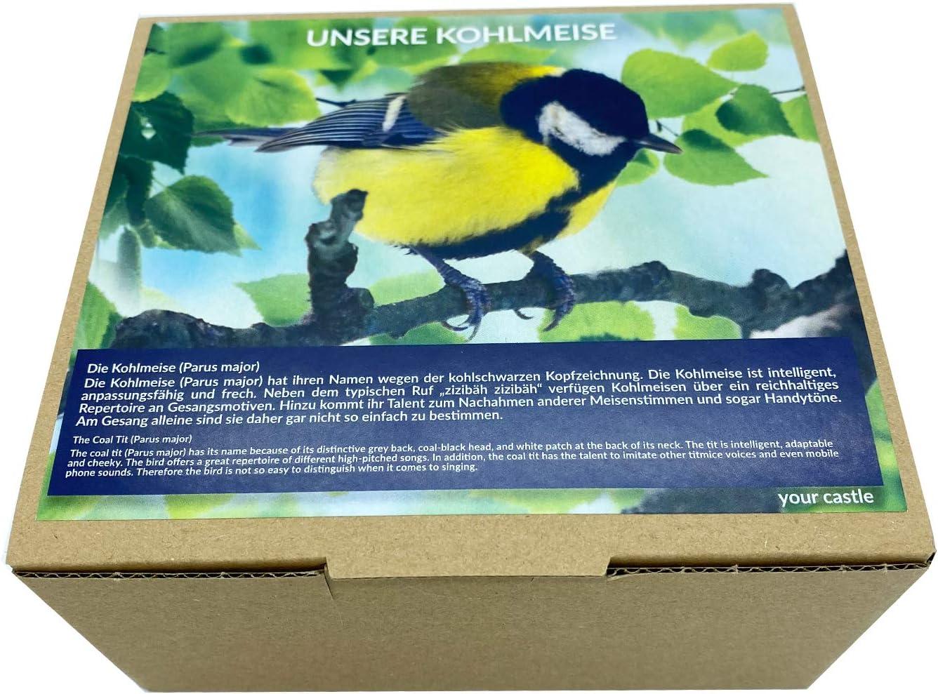 Amsel Oiseau d/écoratif en bois de tilleul fait main Diff/érents types doiseaux 10 x 12 cm