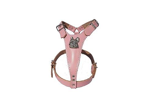 M&D - Arnés de Piel para Perro, diseño de Cabeza de Bulldog ...