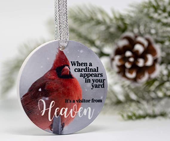 BDCYZHYQ Pair of Cardinal Bird Stained Glass Ornament Style 1 Beautiful Songbirds Cardinals Hanging Decoration When a Cardinal Appears in Your Yard Its a Visitor from Heaven Poem Saying