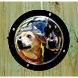 Dog Dome - Doggy Pet Window for Backyard Fence or Dog House - Clear Plastic - One Size Fits Large & Small Dogs