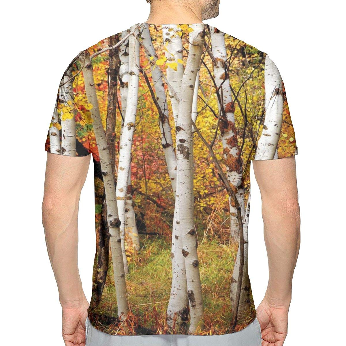 8654e6c7 lsrIYzy 3D Printed T Shirts, White Fall Birch Trees with Autumn Leaves  Growth Wilderness Ecology Calm Serene View | Amazon.com