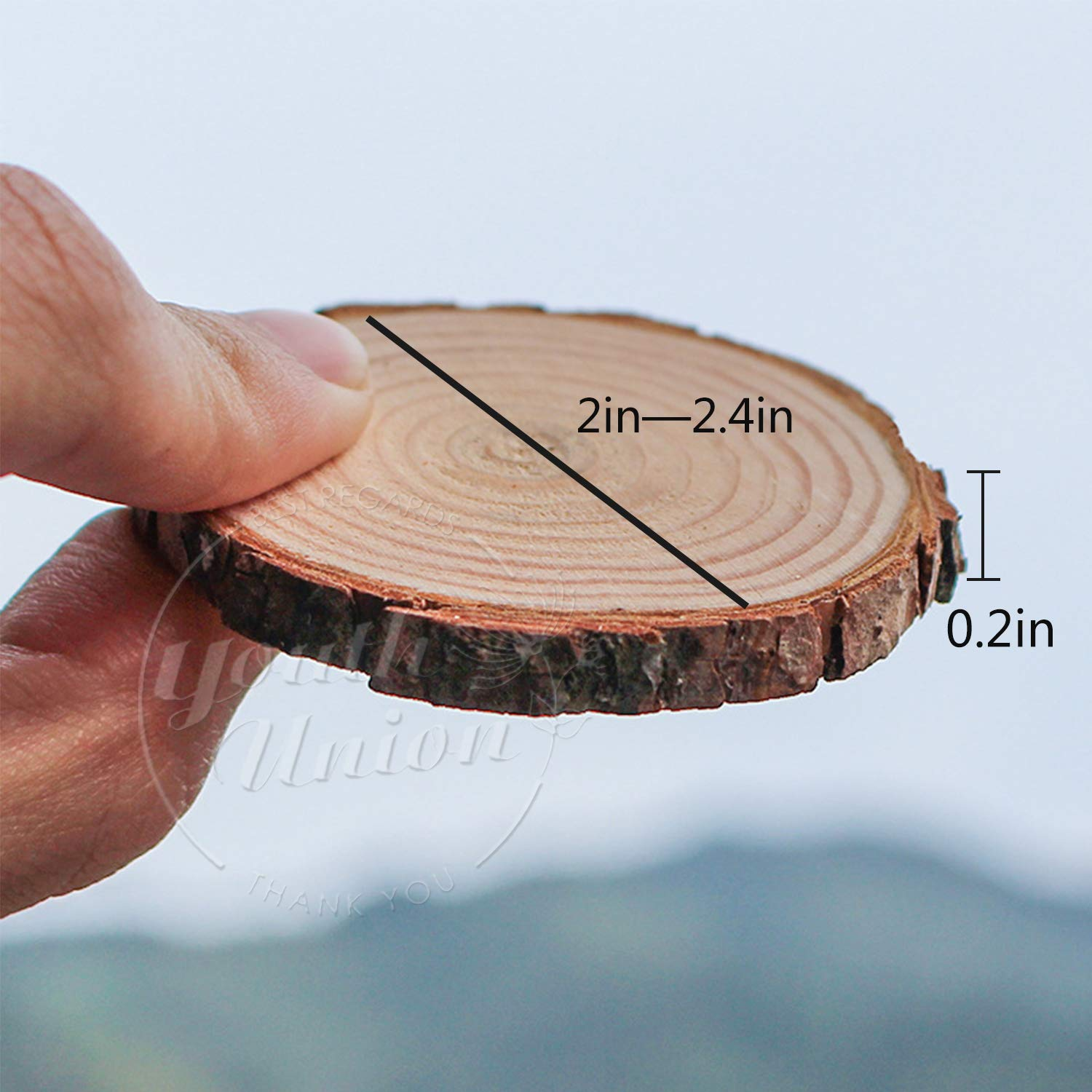 YOUTH UNION 40Pcs 2-2.4 Unfinished Natural Wood Slices Craft Wood Kit Unfinished Predrilled with Hole Wooden Circles for Arts and Crafts Christmas Ornaments DIY Crafts 40Pcs 2-2.4