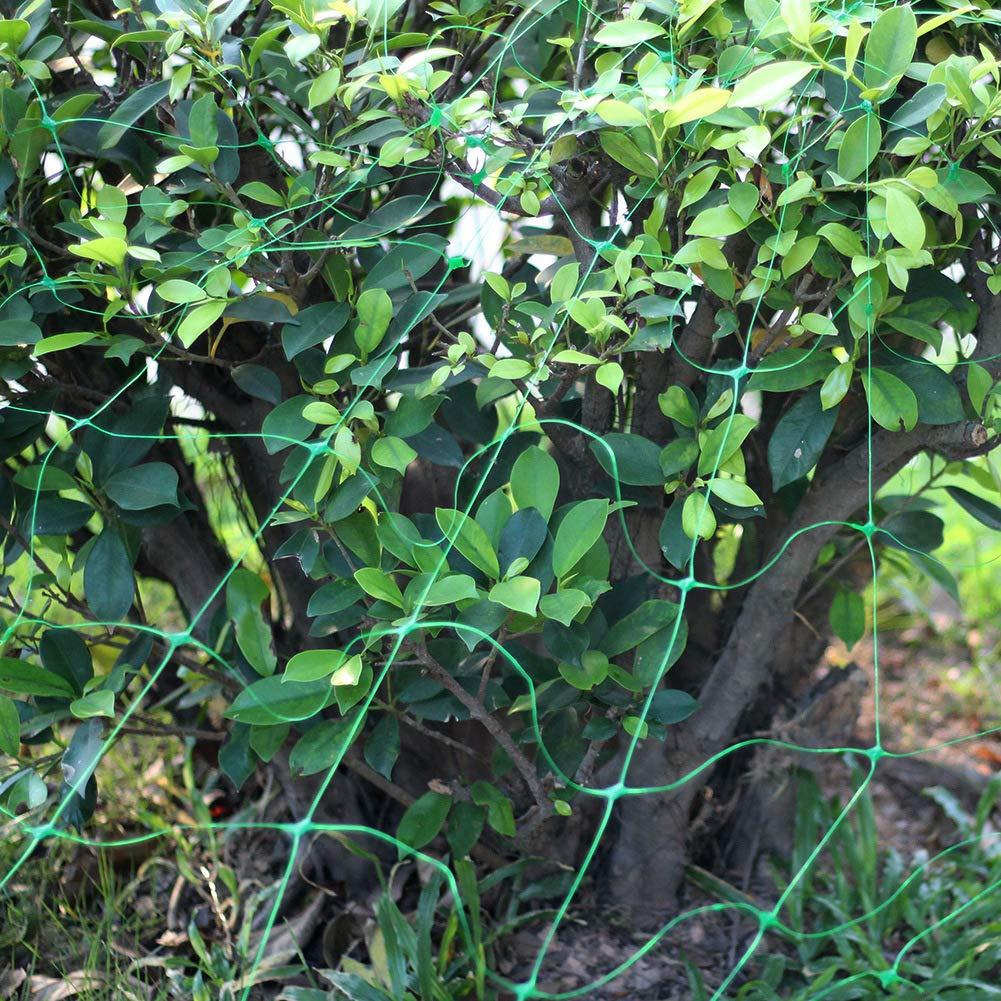 frijoles Malla de enrejado malla de malla para plantas de jard/ín uvas frambuesas. red de enrejado red de plantas trepadoras valla de malla para plantas trepadoras para tomates