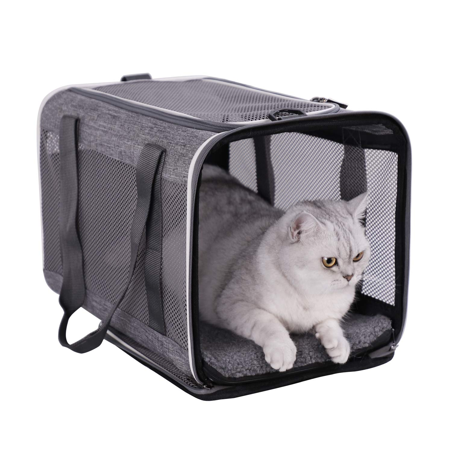 petisfam Top Load Pet Carrier for Large and Medium Cats, Small Dogs. Easy to get cat in, Carry, Storage, Clean and…