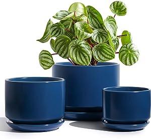 LE TAUCI Plant Pots 4.5