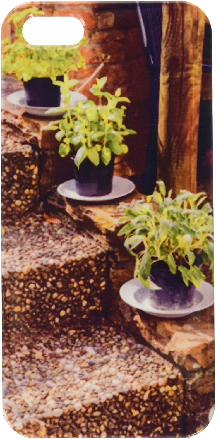 herbs in plant pots growing on the garden stairs cell phone cover case iPhone5