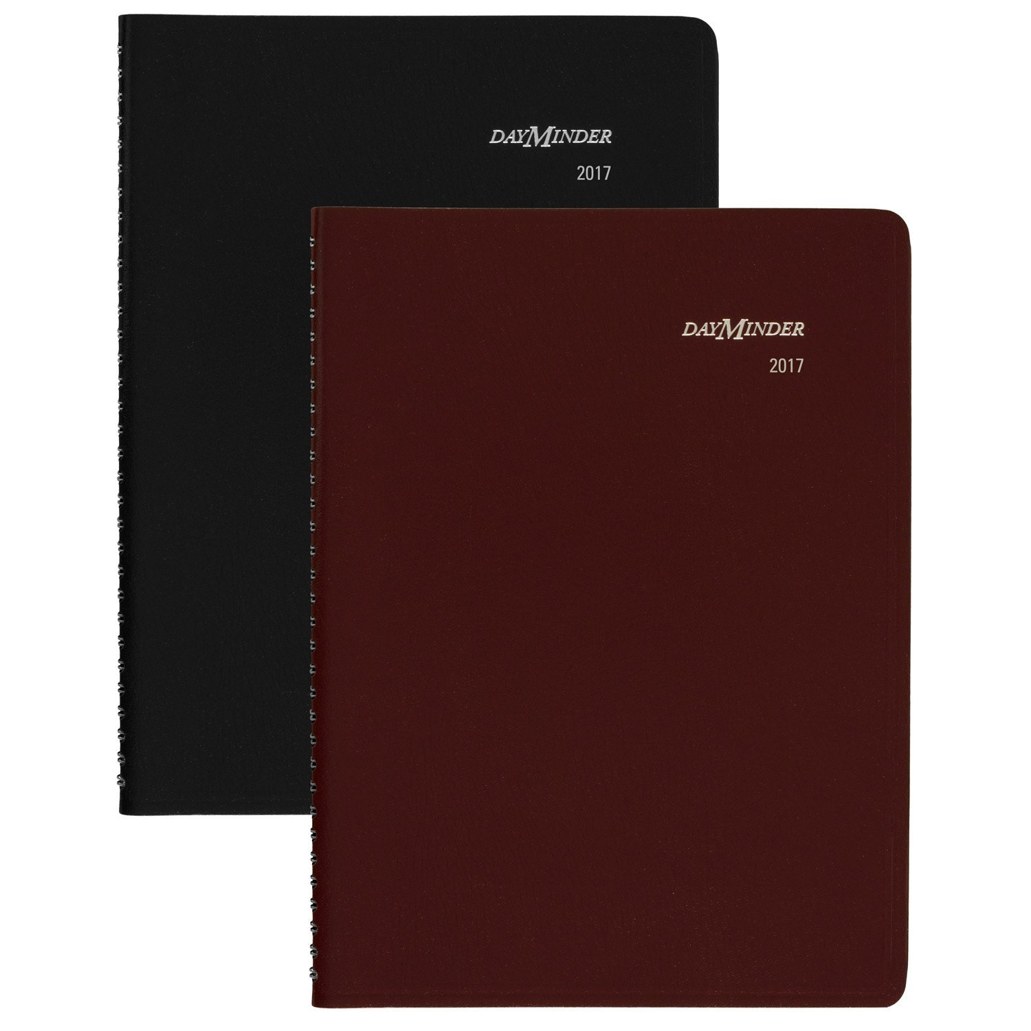 DayMinder Weekly Appointment Book/Planner 2017, 8 x 11, Color Selected For You May Vary (G520-10) 8 x 11 ACCO Brands G52010