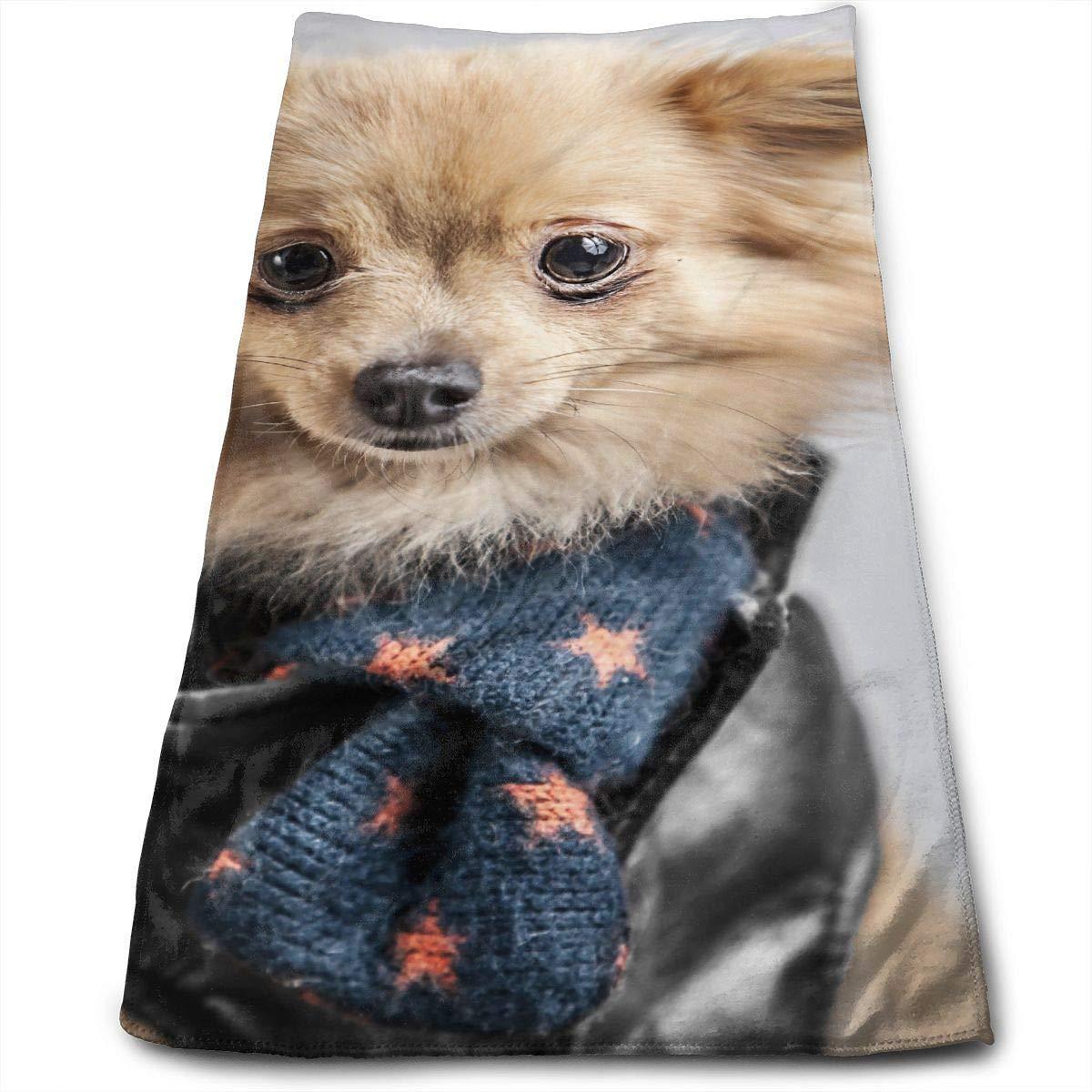 Osmykqe The Pet Pomeranian Cotton Bath Towels for Hotel-SPA-Pool-Gym-Bathroom Super Soft Absorbent Ringspun Towels