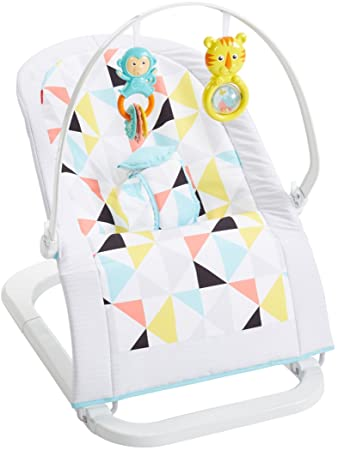 7a0613a40 Amazon.com   Fisher-Price Fun and Fold Bouncer   Baby