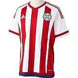 adidas hombre de manga corta camiseta de Paraguay Replica jugador-del