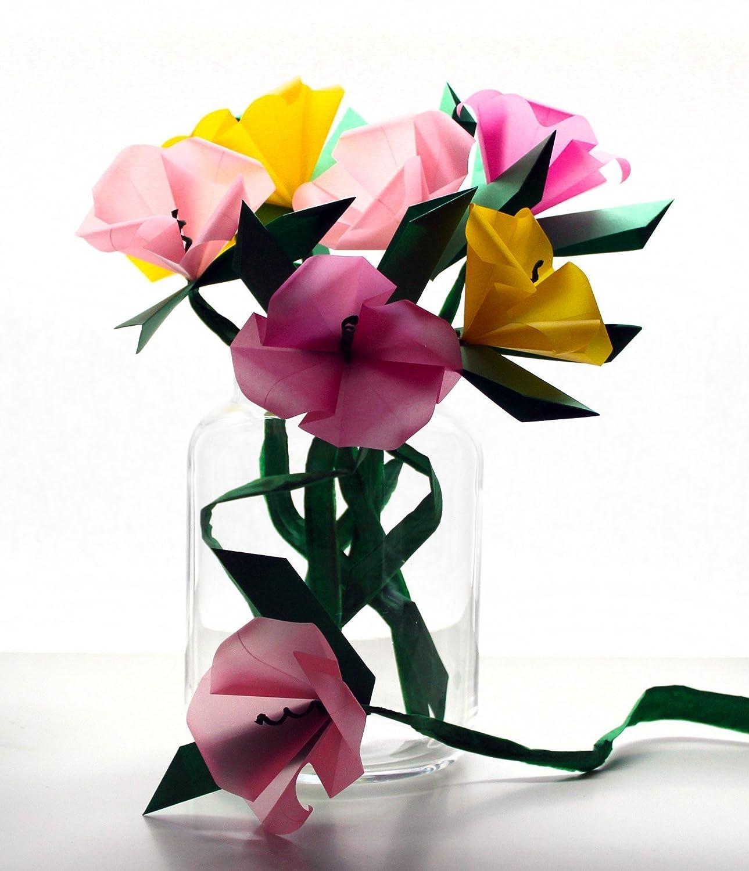 Amazon Origami Diy Kit Make Your Own Wildflowers Origami