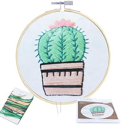 Amazon Com Aqueenly Embroidery Starter Kit Full Set Cactus Cross