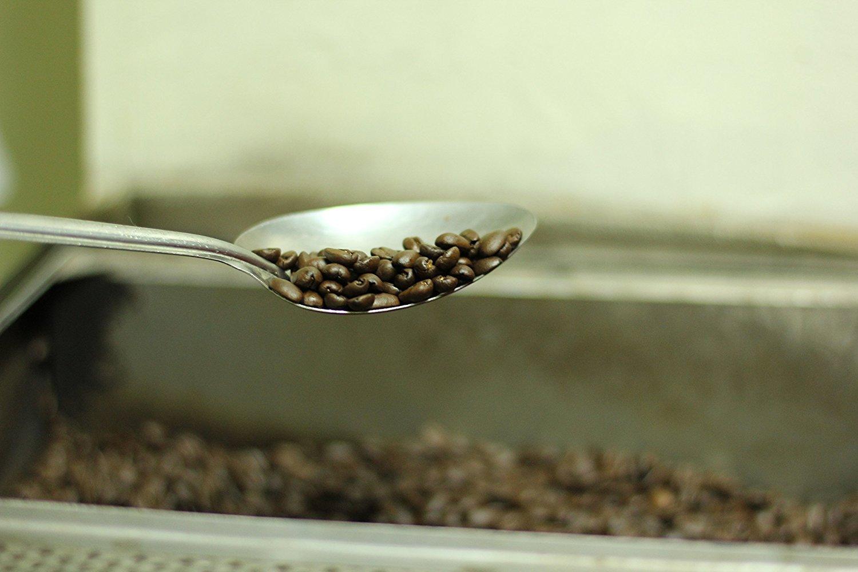 Wild Civet Coffee Free Range Kopi Luwak Genuine High Robusta Premium Gayo Land Quality Beans Organic Natural And Fair Trade By