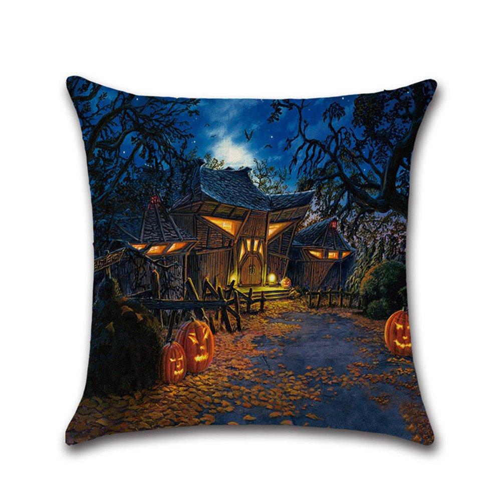 lilyyong Halloween gato negro calabaza cuadrado fundas de almohada Throw Cojín Case Cierre de cremallera Home decorativo, F, 18 * 18: Amazon.es: Hogar