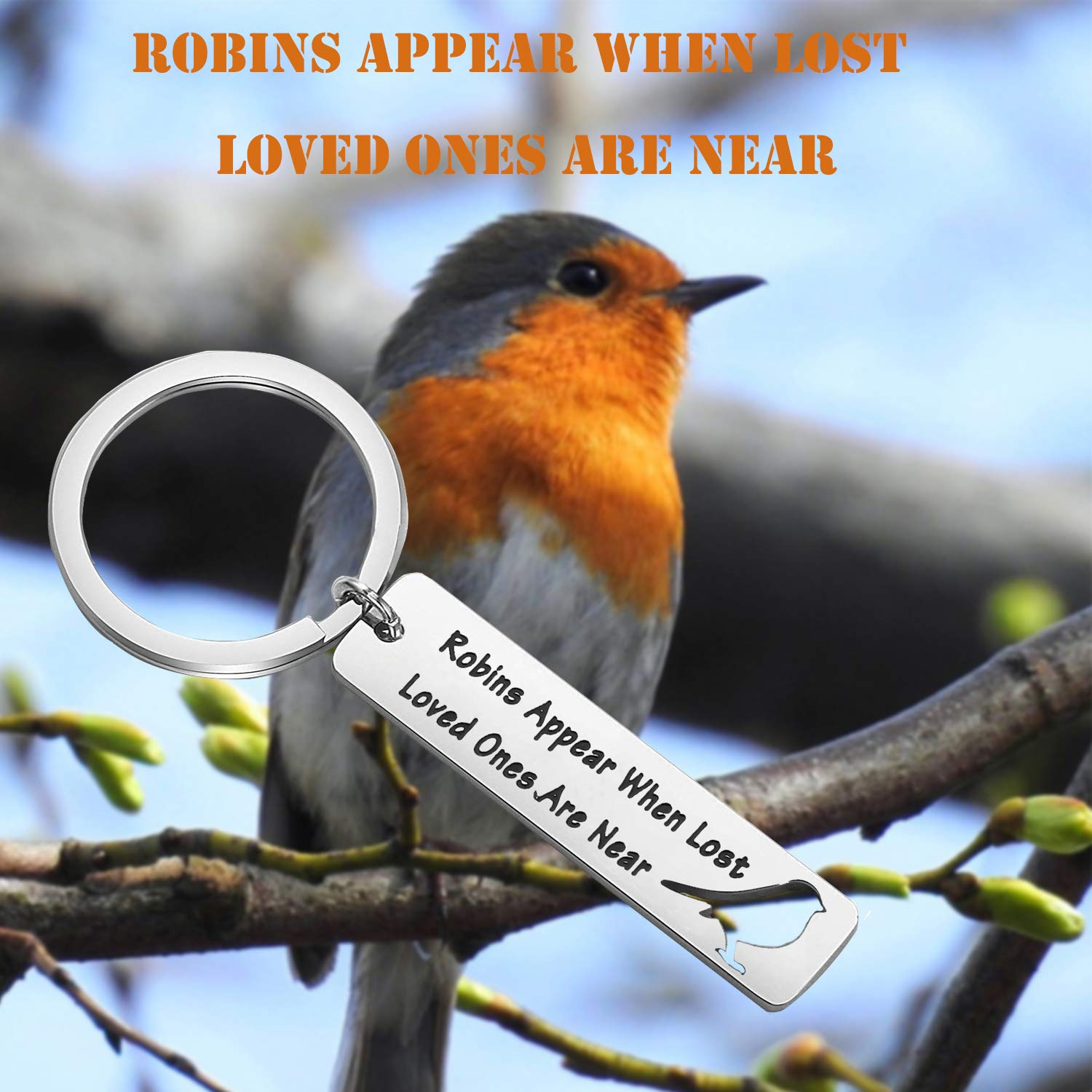 PLITI Memorial Jewelry When Cardinals Appear Your Loved One is Near Family Loss Remembrance Sympathy Gift