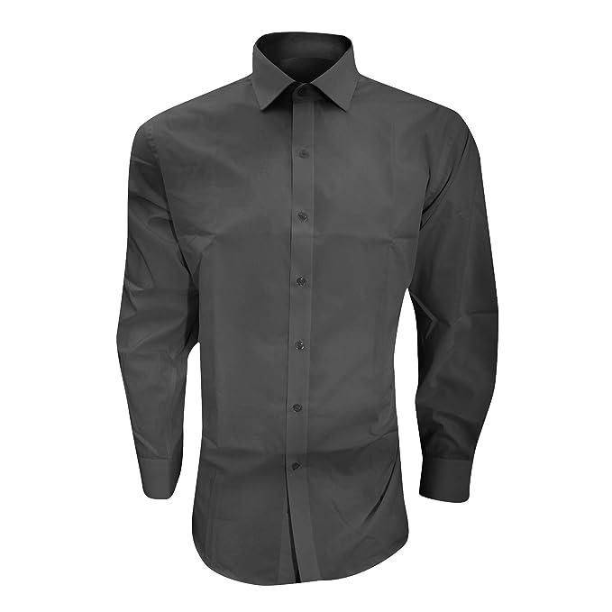 Brook Taverner - Camisa entallada de manga larga Plancha-fácil ...