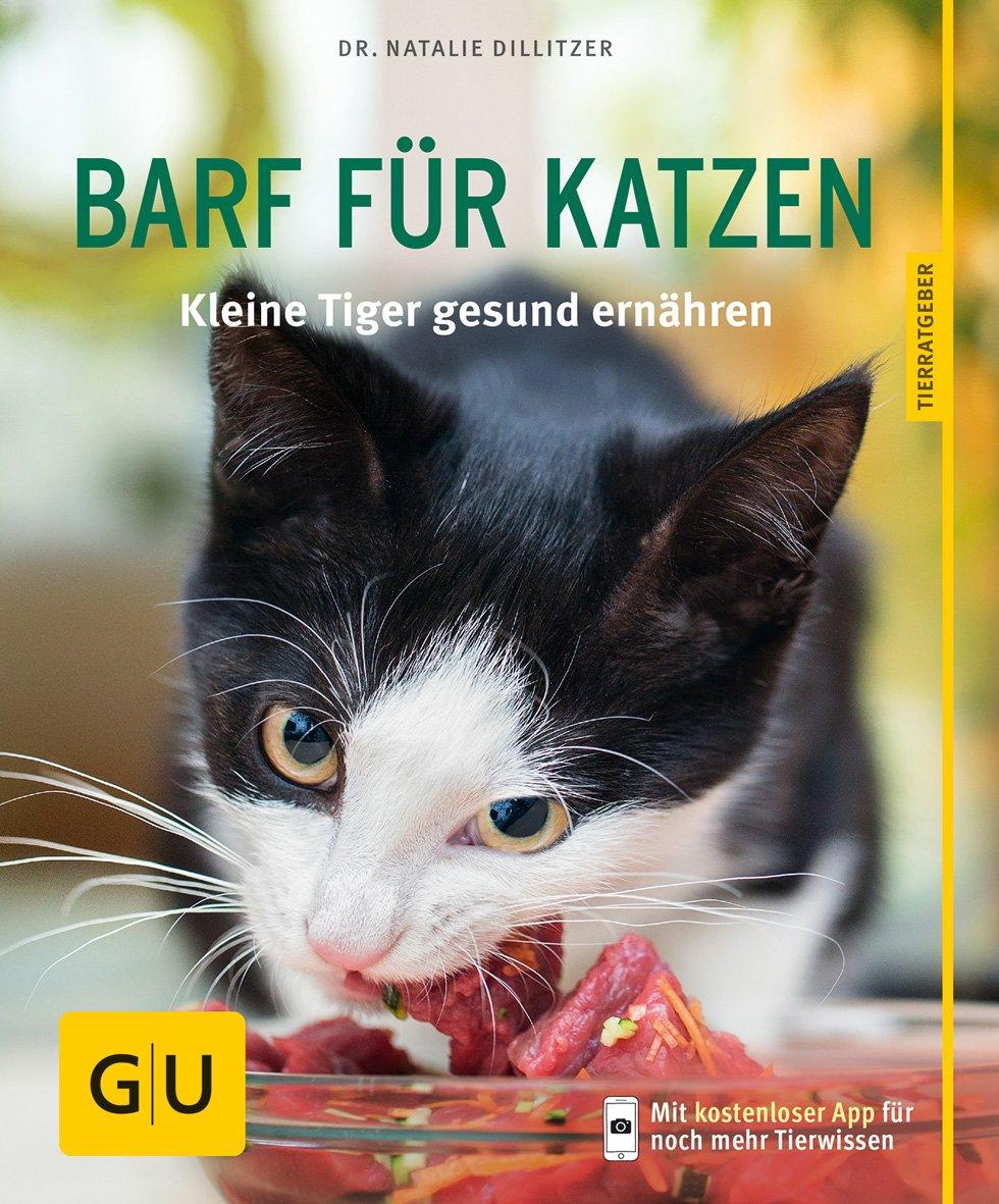 BARF für Katzen gelb 12 x 35 cm: Kleine Tiger gesund ernähren