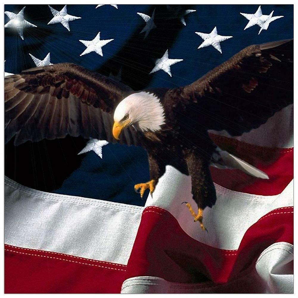 ArtPlaza TW92334 Art Studio-American Eagle Decorative Panel, 15.5x15.5 Inch, Multicolored