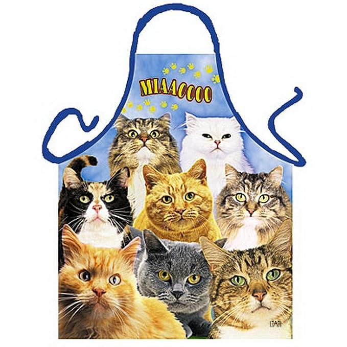 Delantal - - Gatos - divertido diseño Delantal como regalo para barbacoa Fans con Humor: Amazon.es: Ropa y accesorios