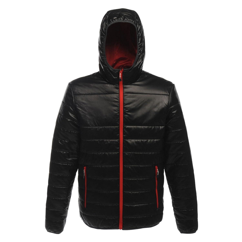 Acadia Warmloft Down Touch Jacket Moderno Uomo Regatta