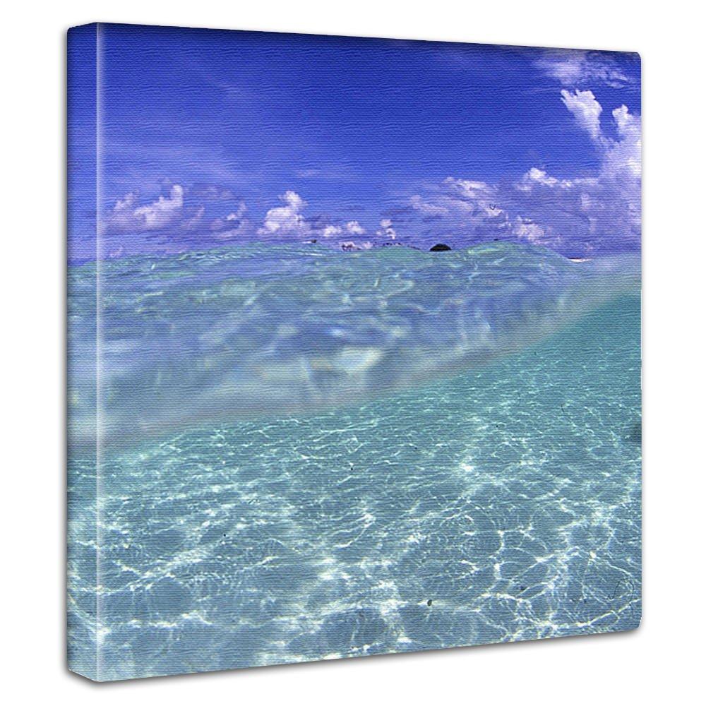 【アートデリ】楠哲也氏が撮影したインテリアパネル 水中 kus-0002-L Lサイズ B00W9OEBAA Lサイズ(57×57cm) Lサイズ(57×57cm)