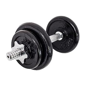 FitAndFun Mancuernas de fitness Pesas Ajustable 4 Discos Entrenamiento Muscolation Gimnasio Casa 10kg (Cod. SP5016): Amazon.es: Deportes y aire libre