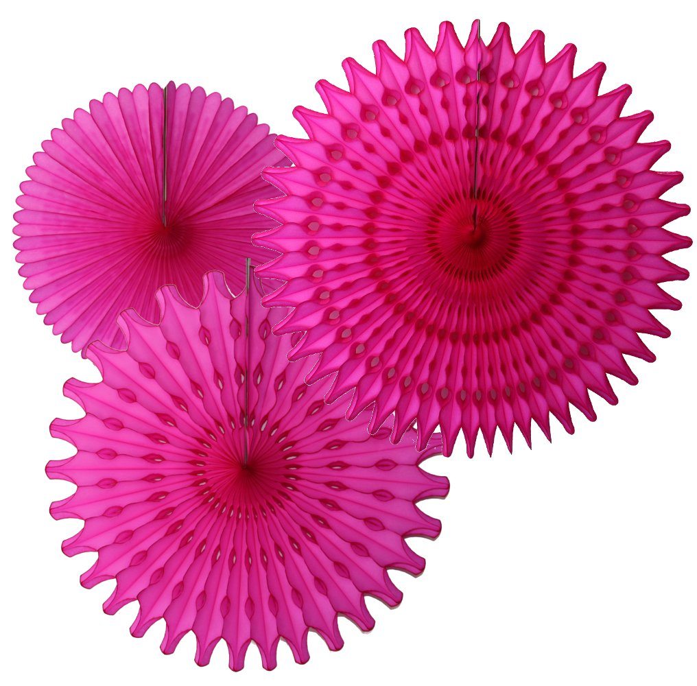 Hanging Honeycomb Tissue Fan, Cerise, Set of 3 (13 inch, 18 inch, 21 inch)