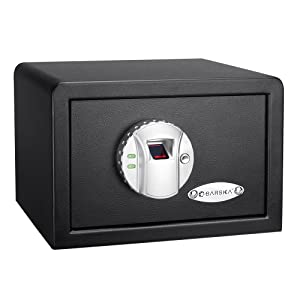 BARSKA Mini Biometric Safe Review