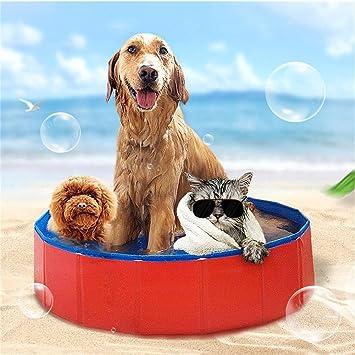... Natación Perro Piscina Cama de la Casa de Verano Piscina Azul + Rojo Tina de Baño Perro Gatos Arandela Pet Pet Pool: Amazon.es: Productos para mascotas