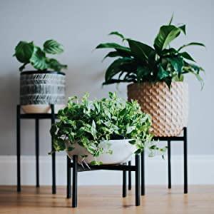 Set of 3 Plant Stands for Indoor & Outdoor Pots - Black Metal Potted Plant Holders for House, Garden & Patio - Mid Century Design to Suit Any Decor by Aubury & Co