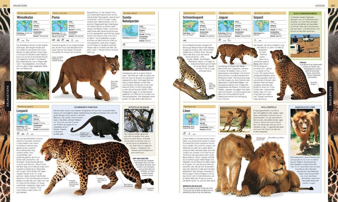 Tiere: Die große Bild-Enzyklopädie mit über 2000 Arten: Amazon.de ...