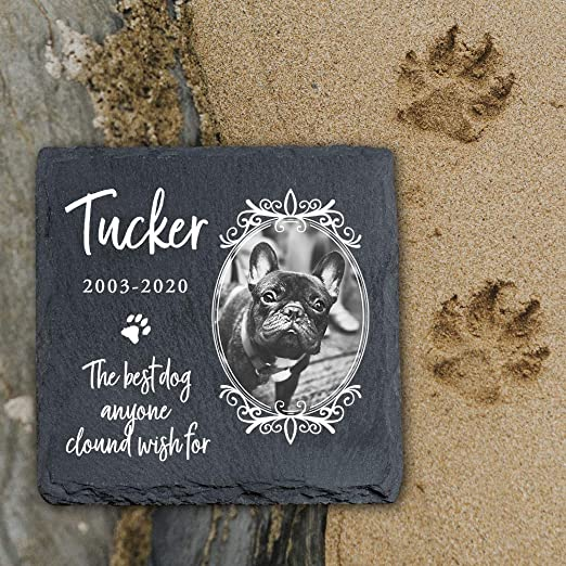 YPH - Placa conmemorativa personalizada para mascotas, gatos y perros, diseño de piedra de pizarra, tamaño 100 x 100 mm, MP10: Amazon.es: Productos para mascotas