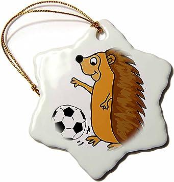 Amazon Com 3drose Cute Funny Hedgehog Playing Soccer Cartoon Snowflake Ornament 3 Home Kitchen