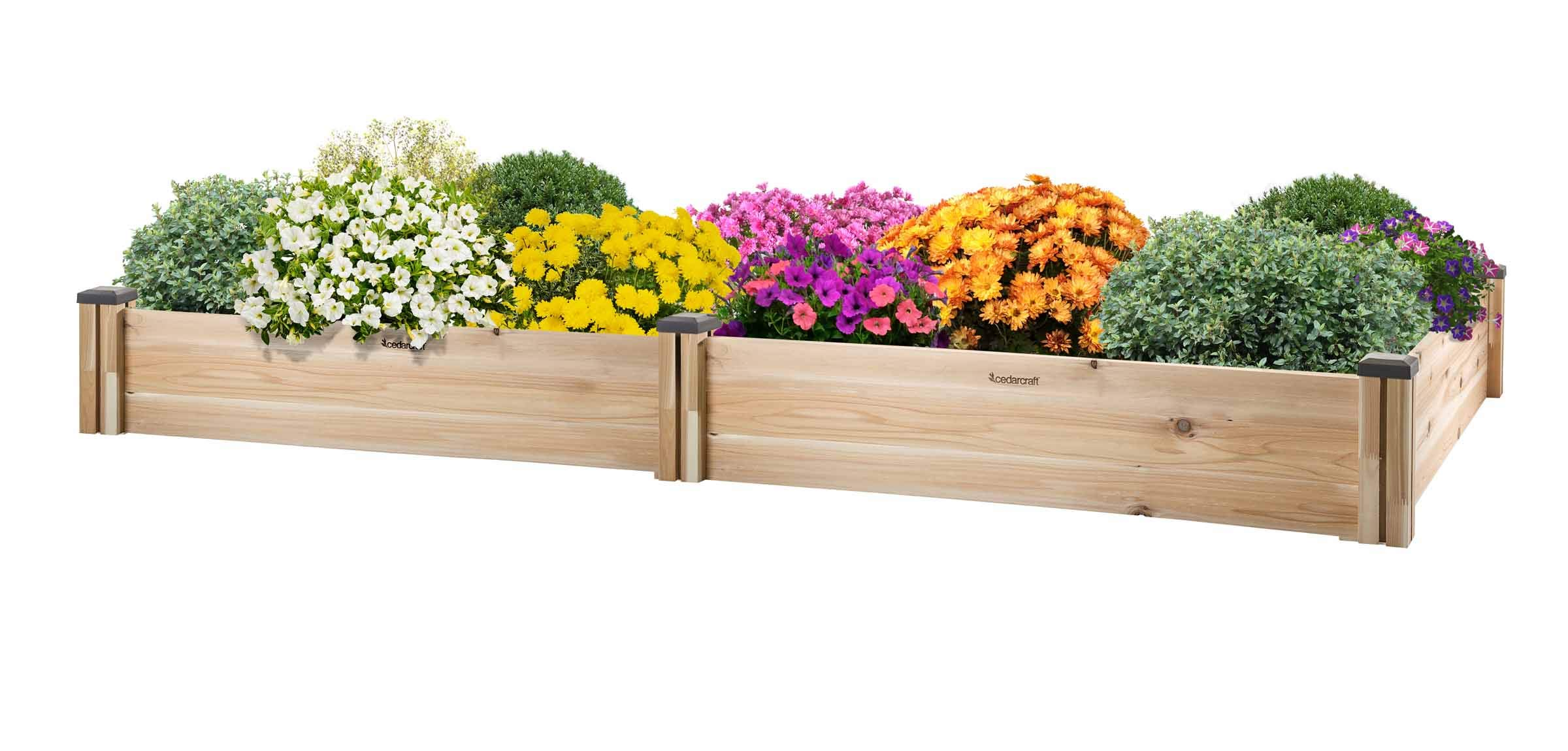 CedarCraft Raised Cedar Garden Bed (95'' X 49'' X 10''H) - Grow Fresh Vegetables, Herb Gardens, Flowers & Succulents. Beautiful Elevated Garden Bed for Your Yard and Home Gardening. No Tools Required.