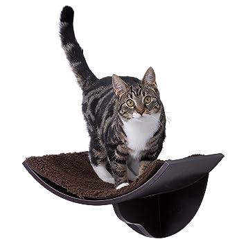 Amazon.com: Trixie - Cama de espresso para gato: Mascotas