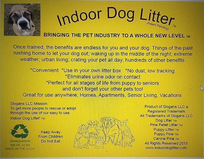 Slogans Indoor Dog Litter (Pack of 2): Amazon ca: Pet Supplies