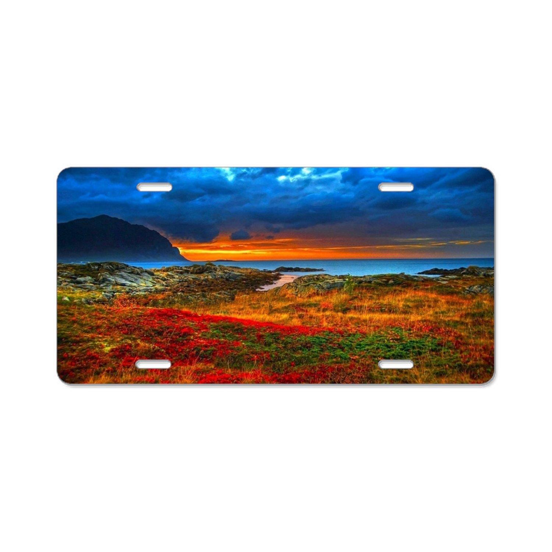 Boeshkey Red Rocks of Sedona Plate Tag 6 X 12-Aluminum Car Metal License Plate for Car Four Holes