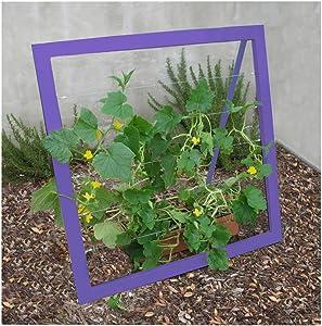 Terra Trellis Mira Garden Trellis Jr (Berry Blue)
