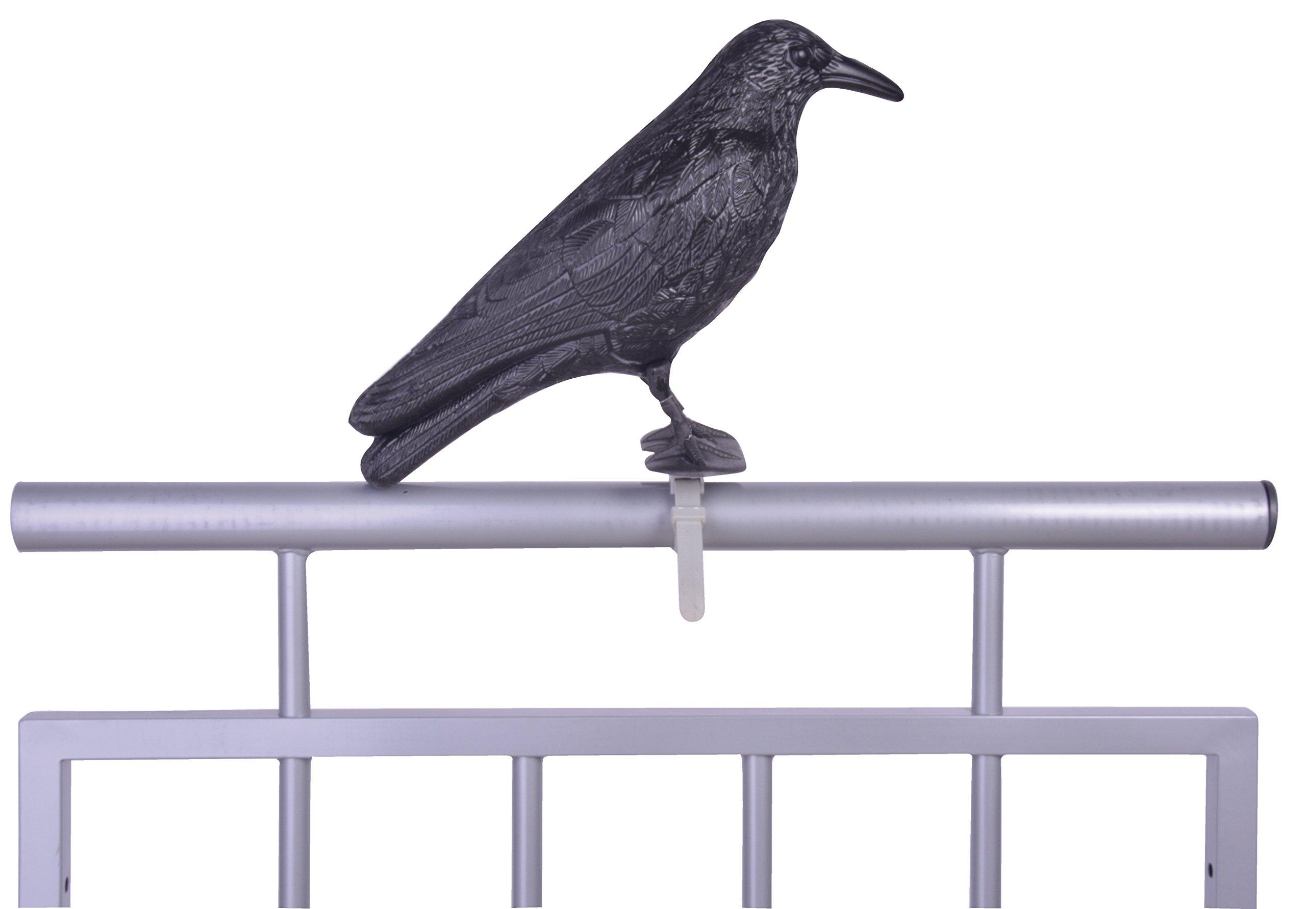 Esschert's Design FY18 Bird Deterrent, Black, Krähe