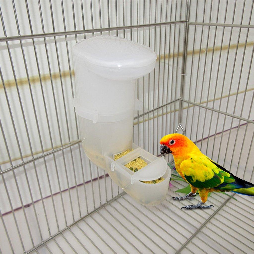 Lazder Pet per Cibo e Uccelli Distributore Automatico di Acqua e pappagalli per Acqua