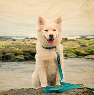 product image for Wood Pet Portrait Print, Dog Lover Gift, Custom Pet Prints, Print On Wood, Cat Photo Frame, Pet Photo, Pet Picture Frame, Pet Memorial Frame