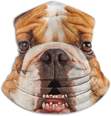 French Bulldog Microfiber Neck Warmer Balaclavas Soft Fleece Headwear Face Scarf Mask for Winter