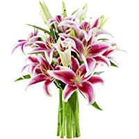 Kabloom Bouquet of 10 Classic Flowers of Fresh Cut Pink Lilies