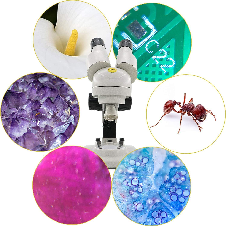 Microscope St/ér/éo SWIFT S102-B /à grossissement 20X // 50X avec adaptateur pour smartphone pi/èces de monnaie insectes en observant de pierres