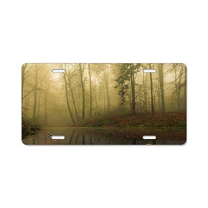 425690d357 Amazon.com  Imtailang Best Design Cool Fog Leaf Reflection Forest Metal  License Plate for Car (New) 12