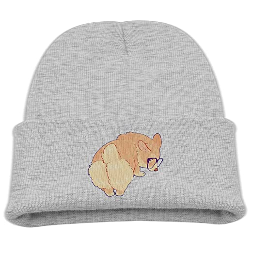 1d2b864c5 Cute Corgi Butt With Sunglass Unisex Kids Beanie Caps Ash at Amazon ...