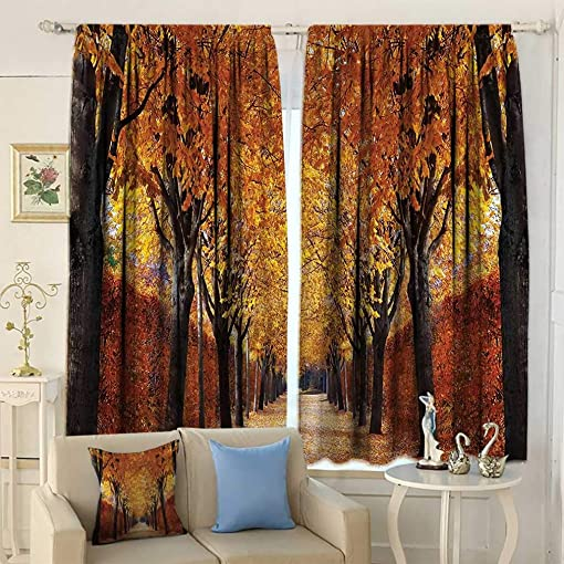 Joedecor Autumn Curtains, Pathway in The Woods Covered with Dried Deciduous Tree Leaves Romantic Fall Season Window Coverings for Living Room Bedroom 2 Panels Set, 108 W x 84 L Orange Brown