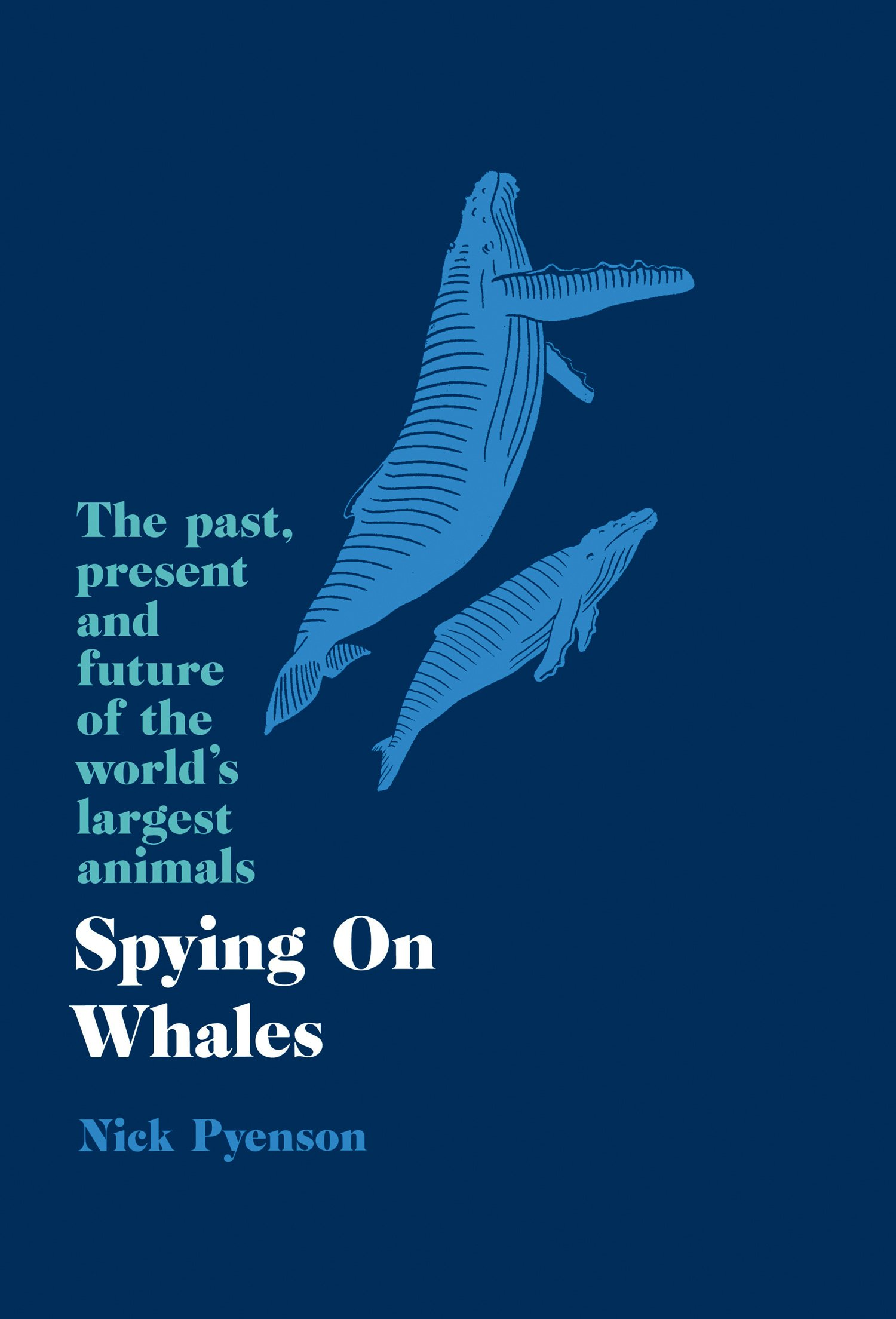 23ca41406a06c Spying on Whales  The Past