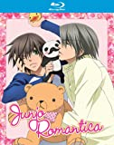 Junjo Romantica: Season One Blu-ray Collection (Junjou Romantica)