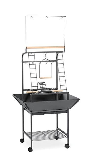 Prevue Bird Perch Playstand